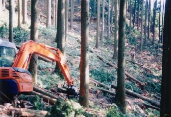 集材作業路上のグラップルと付属ウインチで木寄せする