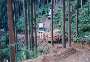 集材作業路は2.5m幅。軽自動車の四駆ならば十分に走行可能。路線計画は入念に行われている