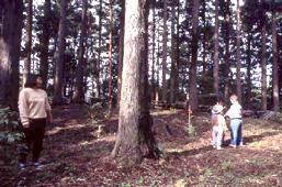 森林の多種多様な価値を引き出すのは、あなた