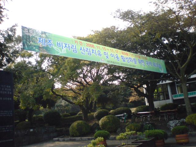 20081120112435.jpg